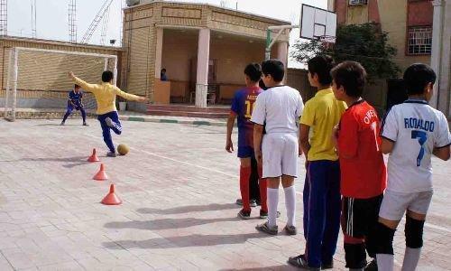 شهیدی: المپیاد ورزش مدارس نمایشی است
