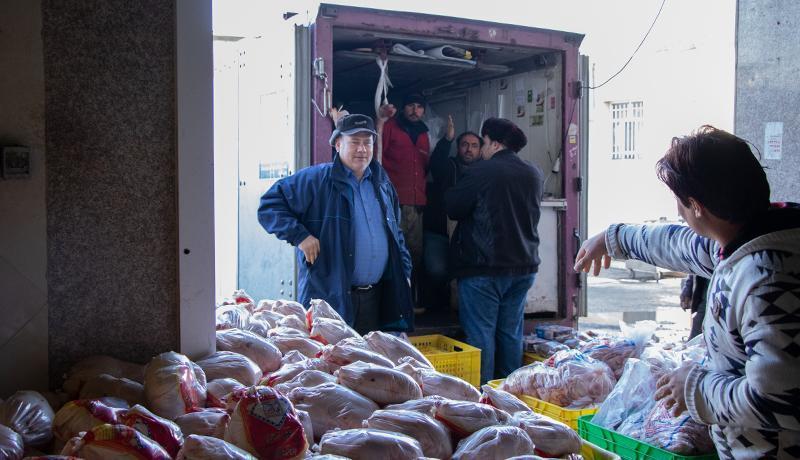 پشت پرده ارزانی مرغ منجمد فروشگاه ها ، قیمت واقعی مرغ چقدر است؟