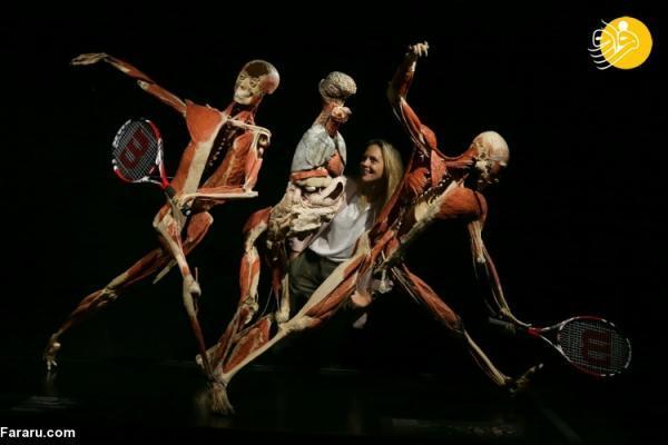 (تصاویر) نمایشگاه جنجالی دنیای بدن
