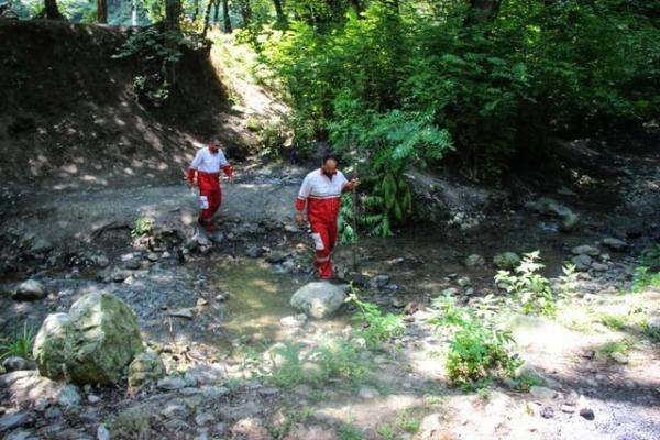 72 ساعت جستجوی بی نتیجه برای یافتن پیرمرد گمشده در جنگل علی آباد کتول